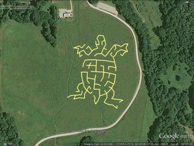turtle-maze-google-earth