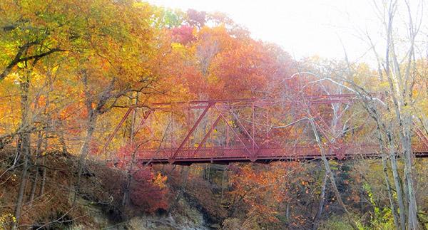 Fall-foliage-at-McCloud