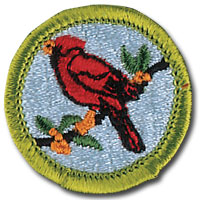 Scout Sunday: Boy Scout Bird Study Merit Badge Workshop @ McCloud Nature Park | North Salem | Indiana | United States