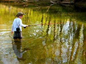 Fly Fishing for Beginners @ Plainfield | Indiana | United States