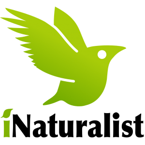 iNaturalist Citizen Science @ Plainfield | Indiana | United States