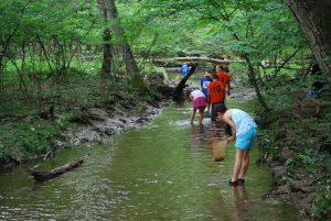 Creek Splash @ Ellis Park